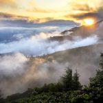hills, landscape, mist
