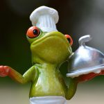 frog, cooking, eat