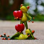 frogs, pair, love
